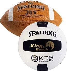 king of the beach volleyballs
